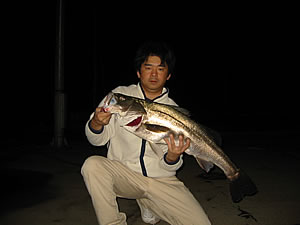 90up-shinoda1-2